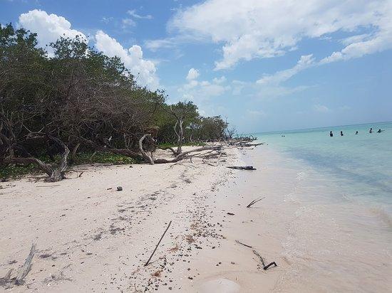 Cayo Jutia Beach: Praia de Cayo Jutias