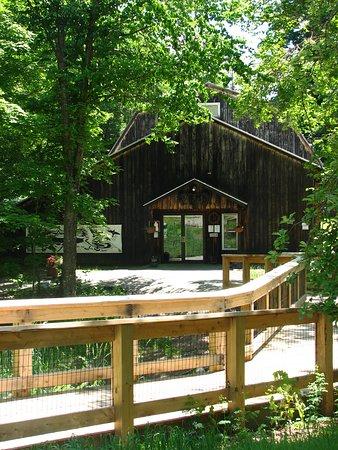 Huntington, VT: Our entrance via footbridge from parking to the rain garden + front door enjoys both sun and sha