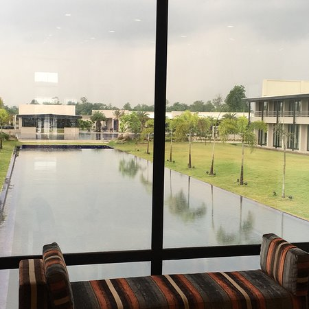 Bilde fra Tiger Palace Resort