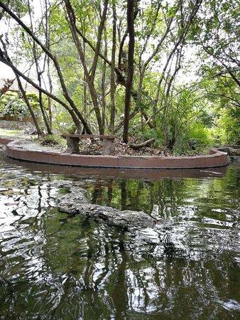 Sungai Klah Hot Spring Park: one of the hot spring pool