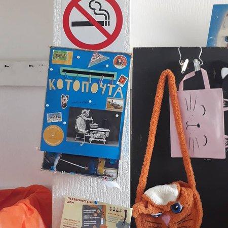 Cat Cafe Lapy & Khost