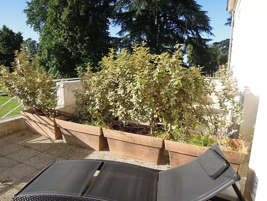 Mignaloux-Beauvoir, France: Bacs à mauvaises herbes sur la terrasse de la chambre (séparation avec la chambre d'à côté)
