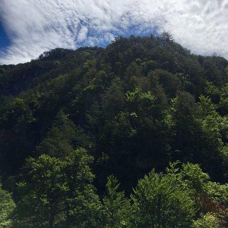 Moggio Udinese, Italie: Riserva naturale val alba and the hiking track