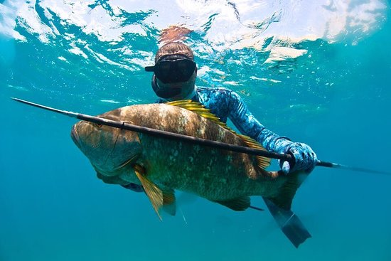 ‪Spearfishing Baja‬