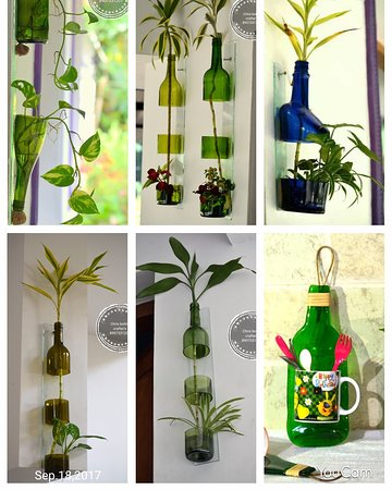 Muvattupuzha, India: Crafted glass bottle pots with indoor plants