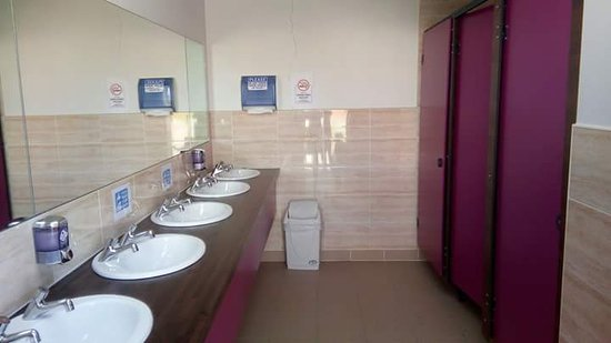 Knightstown, Ireland: ladies toilets