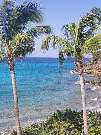 Coconut Coast Villas: View from 2 BR Birds of Paradise condo! Beautiful!