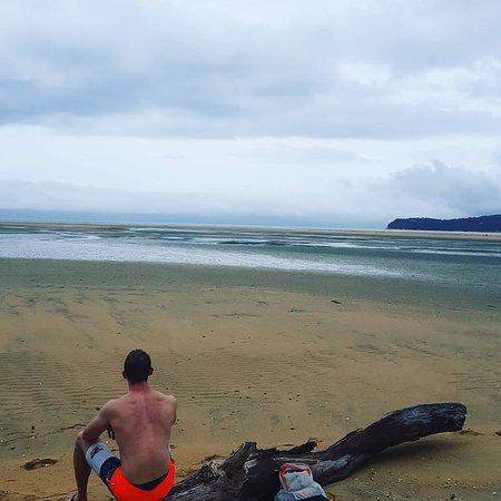 Abel Tasman Coast Track: IMG_20180111_131242_223_large.jpg