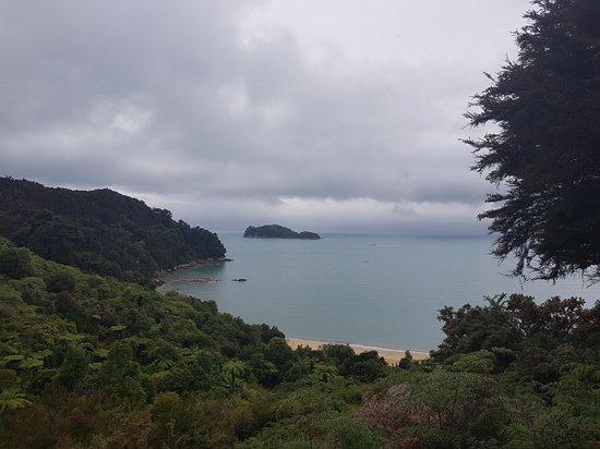 Abel Tasman Coast Track: 20180111_105034_large.jpg