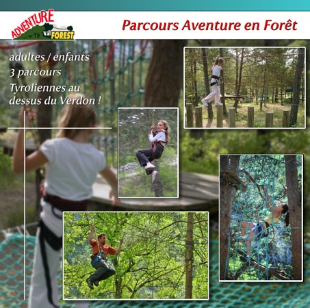 Adventure Forest