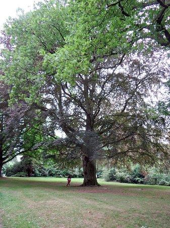 De Bilt, Holandia: the park