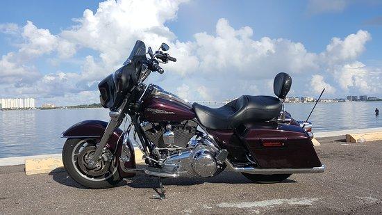 Greg's Harley Rentals