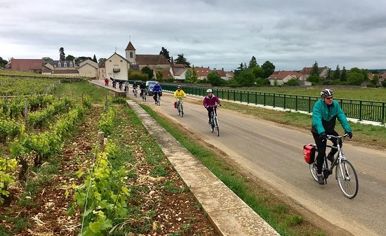 Dijon, Frankrig: Driving by lovely countryside