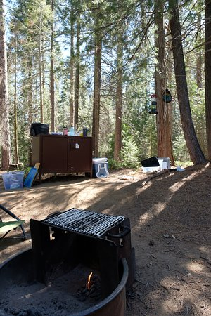 Princess Campground Picture