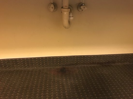 Comfort Inn & Suites: Water damaged/stained carpet below the sink