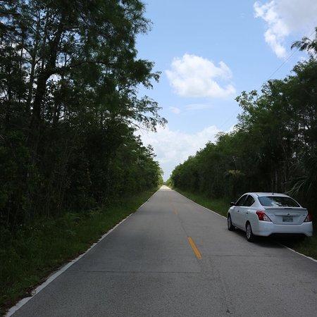 Loop Road: photo3.jpg