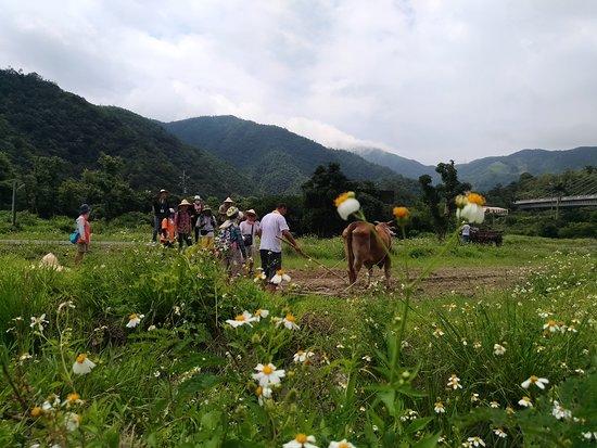 Baimi Clogs Village