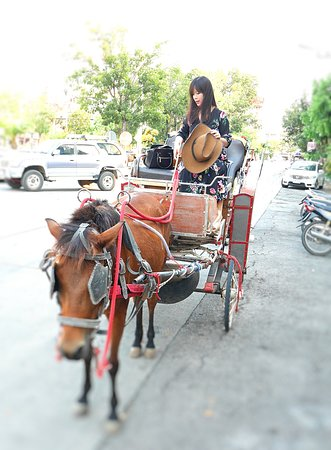 Lampang Province, Thailand: ride horse around the town