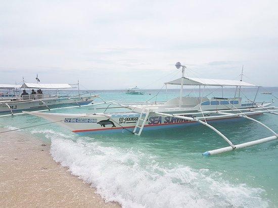 Balicasag Island, Philippines: IMG_20180608_150900_535_large.jpg
