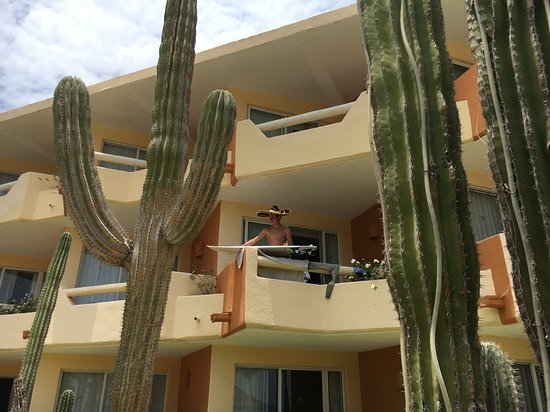 Posada Real Los Cabos: Lovely gardens