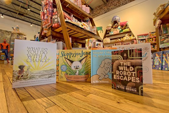 0903cd51f7 Books for all ages and all interest! - Picture of Blue Ridge Toys ...