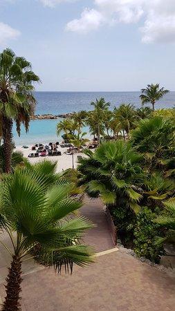 Lions Dive & Beach Resort Curacao: 20180527_135148_large.jpg