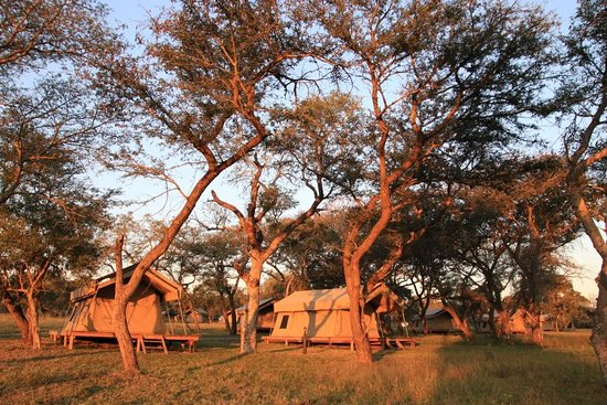 Hectorspruit, Sudáfrica: Blissful tranquility...
