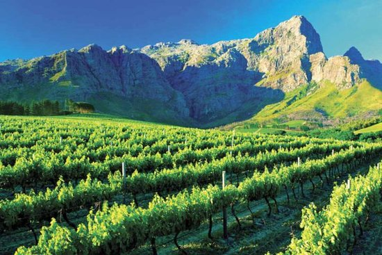 Somerset West, Sydafrika: Elgin Valley Vintage Mini Tour