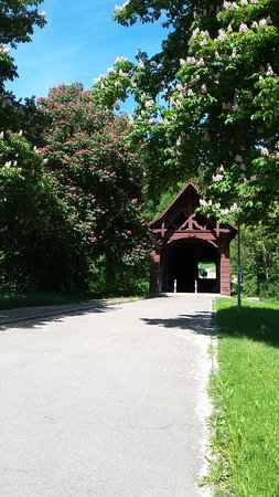 Historische Holzbrucke