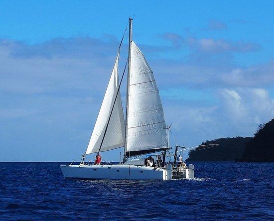 Neiafu, Tonga: Pukuri heading out