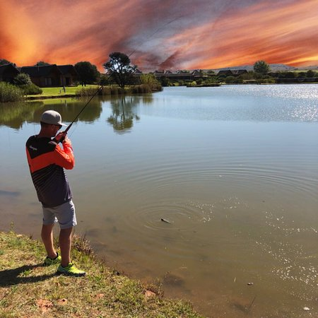 Muldersdrift, Sudafrica: The finest fly fishing in Gauteng. Winter is trout fishing season. All these fish were safely re