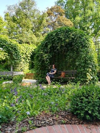 Ogrod Botaniczny Uniwersytetu Warszawskiego