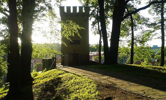 Wieża Anny