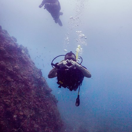 Roctopus Dive: photo0.jpg