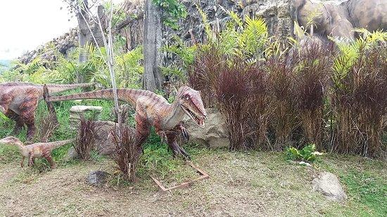 The Rimba Picture Of Jawa Timur Park 3 Batu Tripadvisor