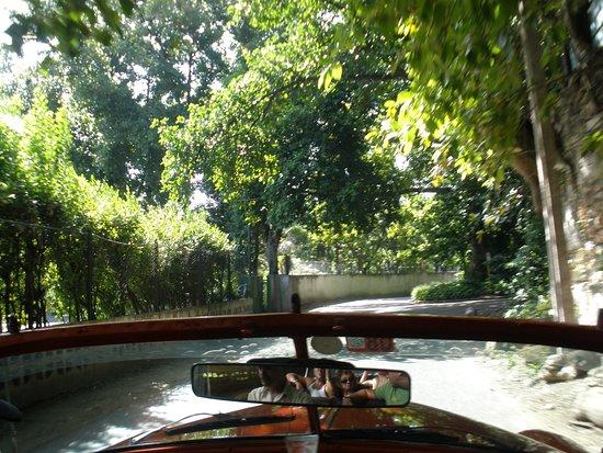 Havana Forest: Βόλτα με αυτοκίνητα - αντίκες στο δάσος της Αβάνας!