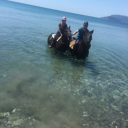 Nana's Horse Riding照片