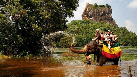 Go Sri Lanka Tours