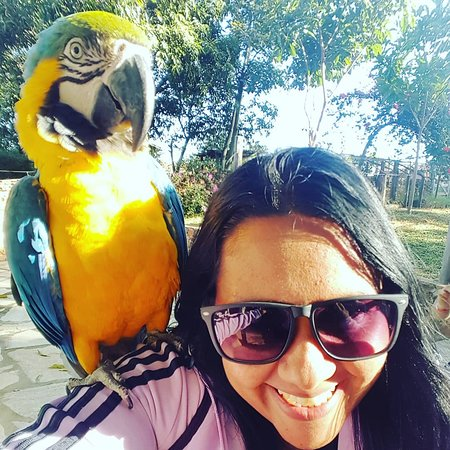 Brazlandia, DF: Tereza, super dócil