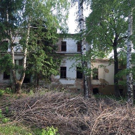 Kamenka, Russia: Усадьба Воейкова