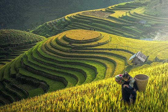 Abeona Travel Vietnam