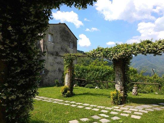 Abbazia di Sant'Andrea: chiostro e monastero