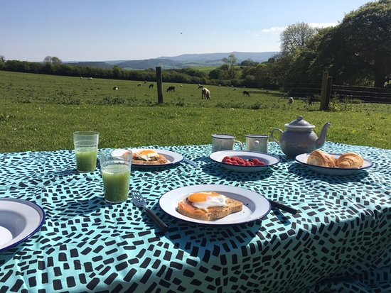 Lifton, UK: Breakfast with a view!
