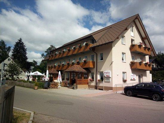 Lenzkirch, ألمانيا: IMG_20180619_102000_large.jpg