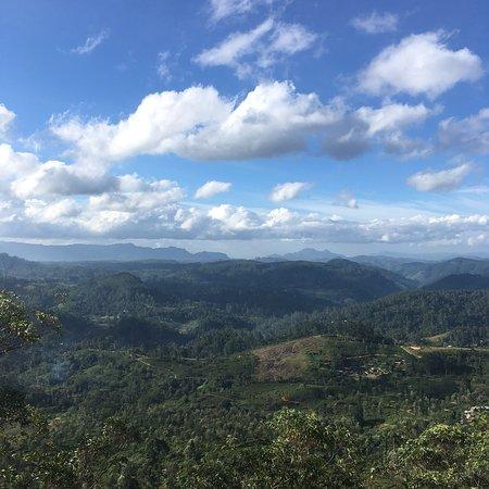 Nanu Oya, Sri Lanka: photo0.jpg
