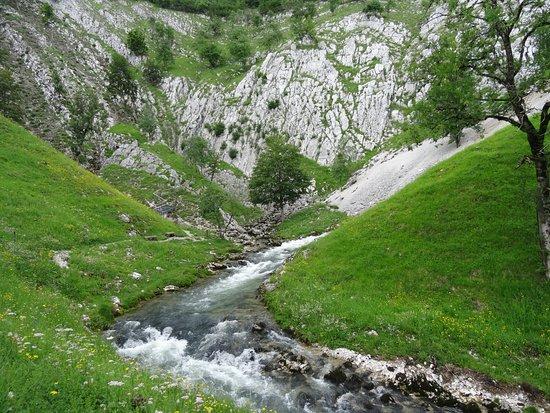 Source de la Saine: si vous aimez la nature....