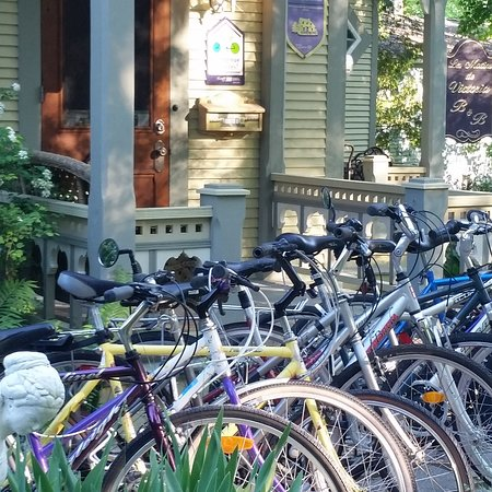 Waterloo, Kanada: Location de Vélos, Bike Rental fleet
