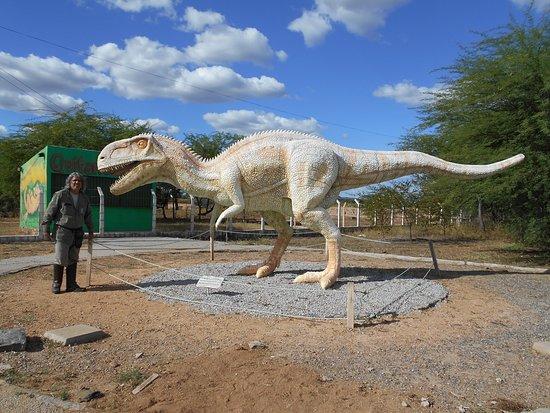 Sousa, PB: Rex, o mascote.