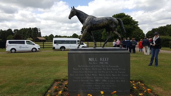 Discover Newmarket Tours: Mill reef