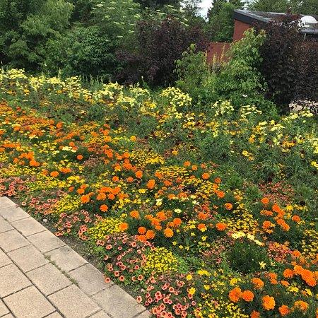 Foto de Kiel Botanical Gardens